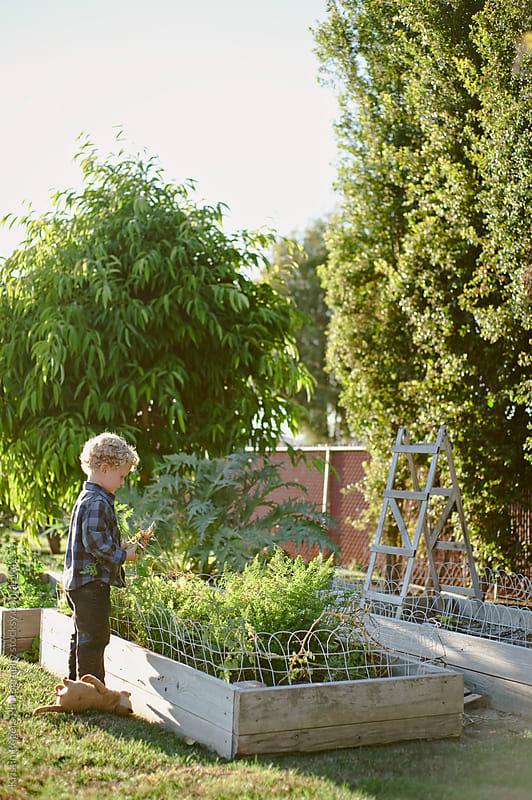 Little Gardener by Kristin Rogers Photography for Stocksy United