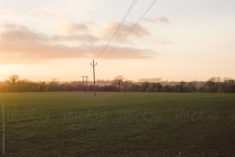 Power lines running through a field at sunset by Mike Marlowe for Stocksy United