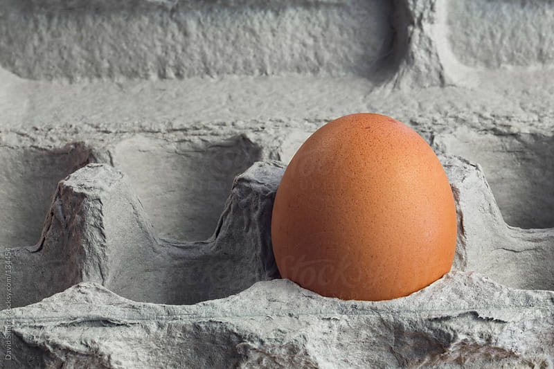Single brown egg in a carton made of recycled paper by David Smart for Stocksy United