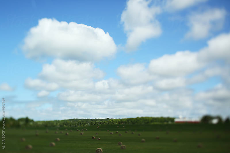 A Field With Hay Bales On A Summer Afternoon by ALICIA BOCK for Stocksy United