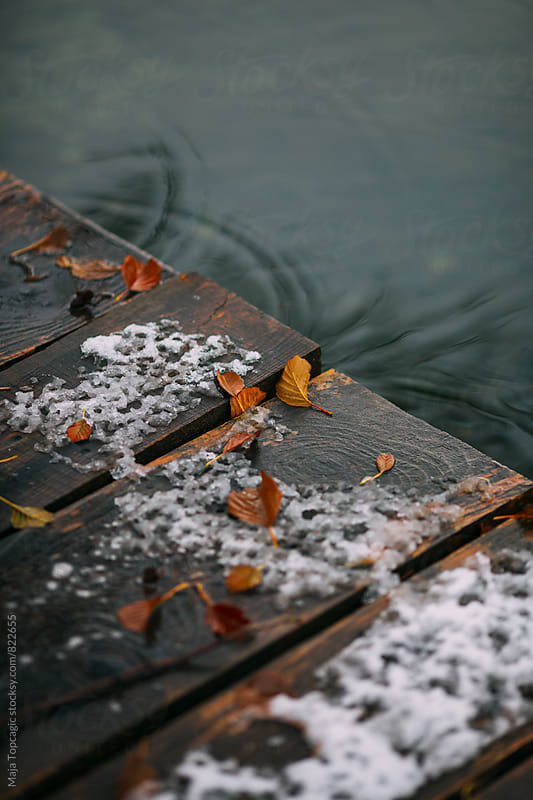 Wooden dock covered in leaves in snow on the lake by Maja Topcagic for Stocksy United