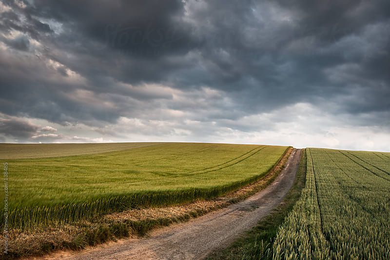 Road leading through fields with thunderstorm approaching by Andreas Wonisch for Stocksy United