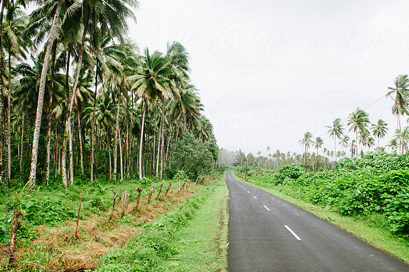 Road South Coast Samoa. by Thomas Pickard Photography Ltd. for Stocksy United