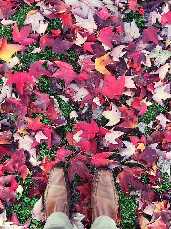 Feet With Worn Leather Shoes On Fall Leaves by Ronnie Comeau for Stocksy United