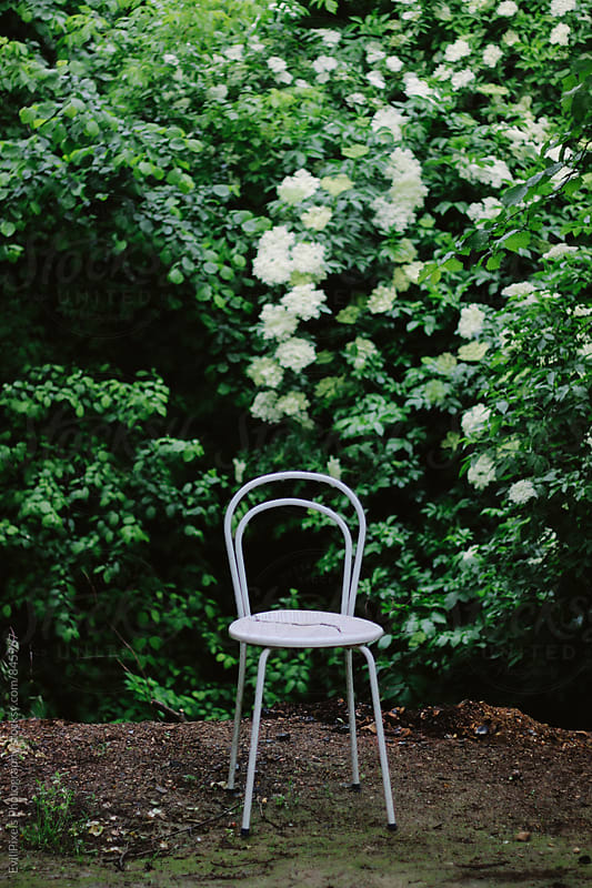 Broken white chair in front of the white flowers by Evil Pixels  Photography for Stocksy United