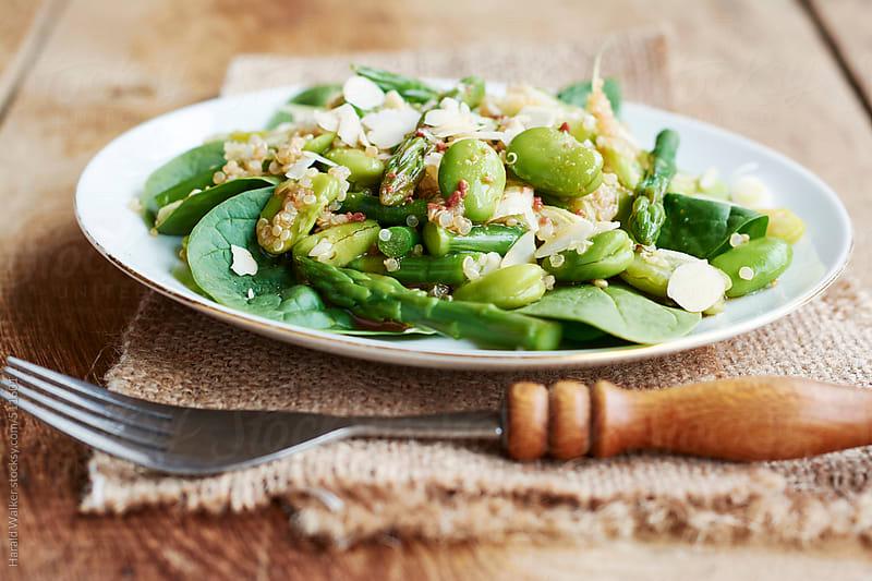 Spring salad by Harald Walker for Stocksy United