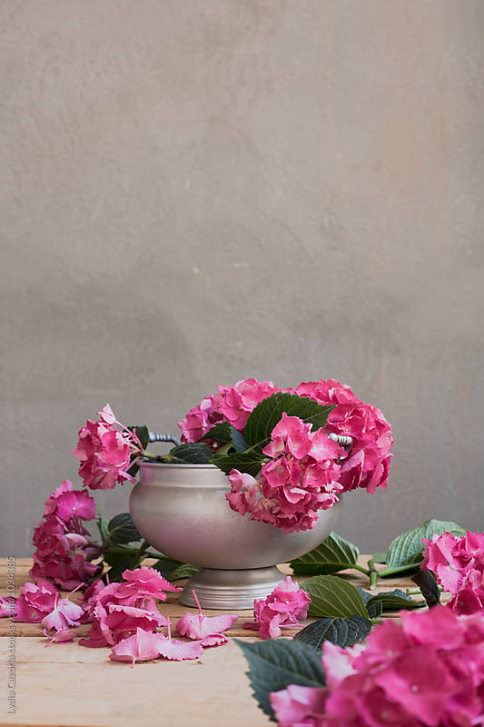 A beautiful arrangement of orchid mixed with leaves in a vintage tureen by Lydia Cazorla for Stocksy United