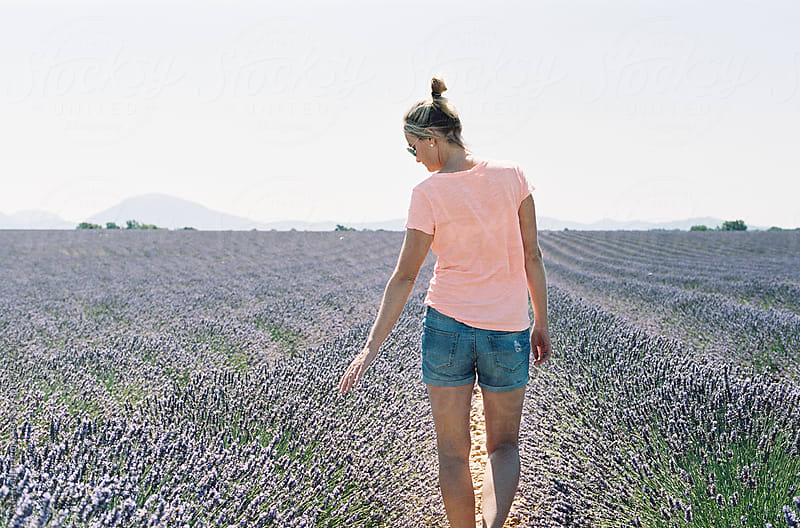 Young woman stroking her hand over blooming lavender at Valensole in Provence, France by Atle Rønningen for Stocksy United