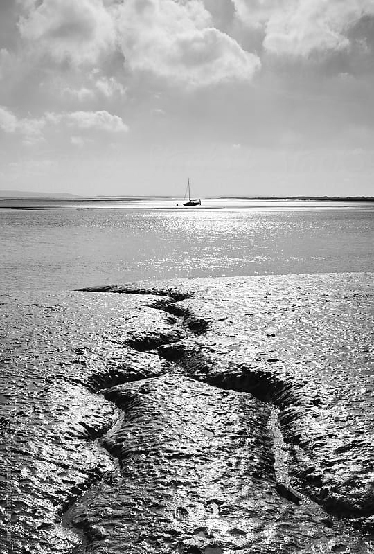 Detail in the sand at low tide. Laugharne, Wales, UK. by Liam Grant for Stocksy United