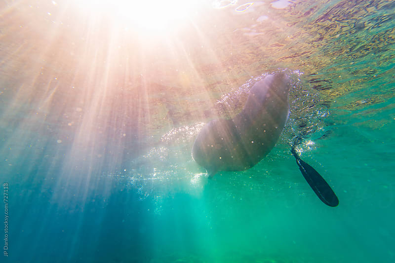 Underwater Photo of Kayaker Paddling in Clear Freshwater Lake with Sun Flare at Family Cottage by JP Danko for Stocksy United