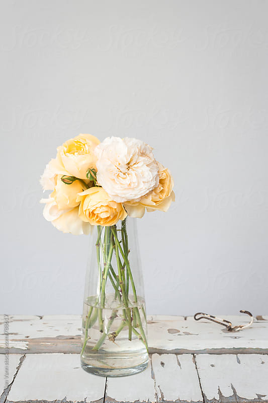 pretty yellow roses in a glass vase by Gillian Vann for Stocksy United