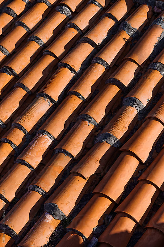 Roof tile by Milles Studio for Stocksy United