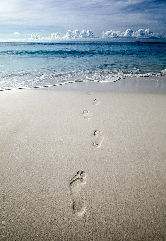 Footprints leading into the sea, Anse Severe beach, La Digue, Seychelles, Indian Ocean, Africa by Gavin Hellier for Stocksy United