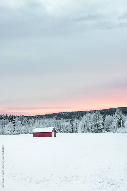 winter landscape in Sweden by Andreas Gradin for Stocksy United
