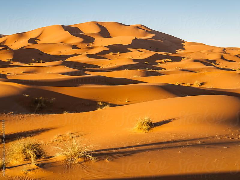 Desert Sand Dunes near Morocco's Merzouga by Andreas Wonisch for Stocksy United