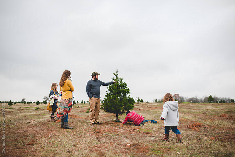 Cutting down the family tree by Courtney Rust for Stocksy United