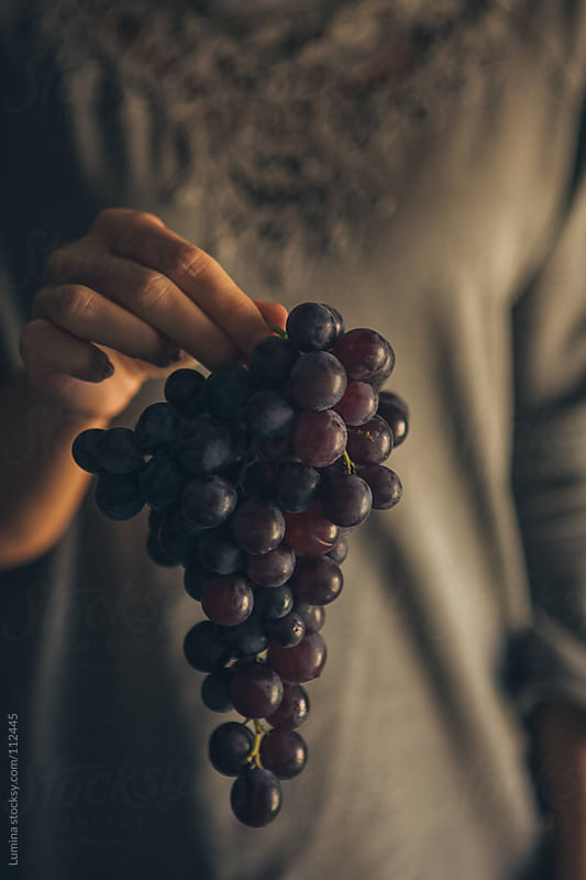 Grapes by Lumina for Stocksy United