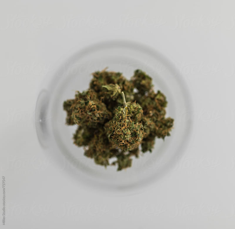 Popular drug in wineglass - weed by Milles Studio for Stocksy United