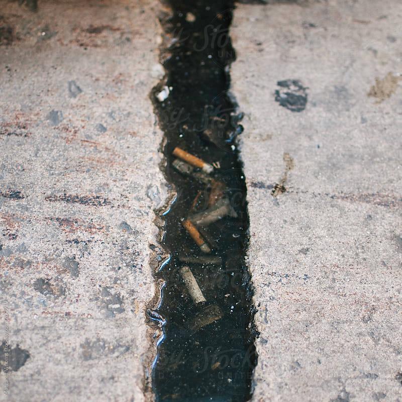 cigarette butts  by Margaret Vincent for Stocksy United