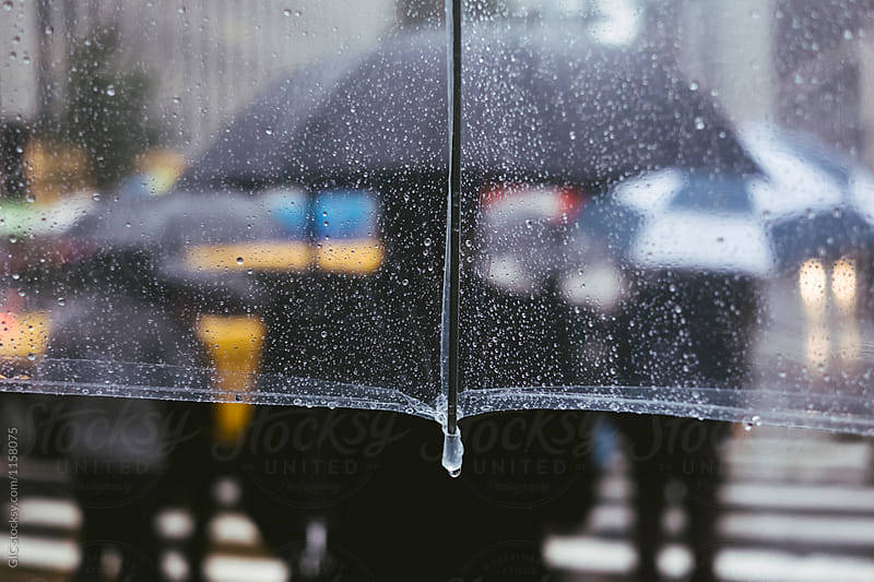 Rain in New York City