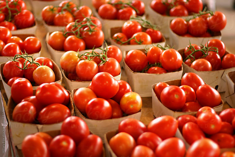 Tomatoes For Sale by Hillary Fox for Stocksy United