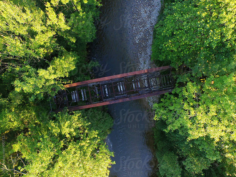 Aerial view bridge over the river in forest by rolfo for Stocksy United