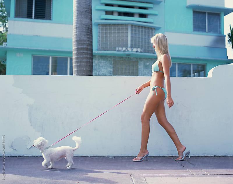 Woman wearing bikini, walking with her pet dog. Miami. USA by Hugh Sitton for Stocksy United