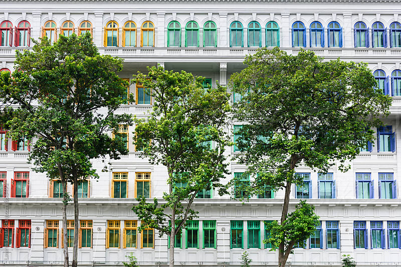 Trees in front of buildings with rainbowlike colorful windows by Lawren Lu for Stocksy United