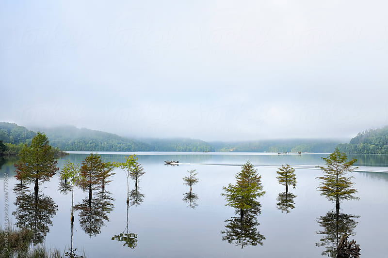 A motorboat disrupts the early morning tranquility on a lake by David Smart for Stocksy United