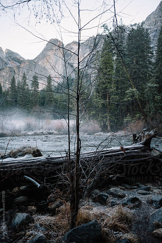 Yosemite Valley by Ryan Tuttle for Stocksy United