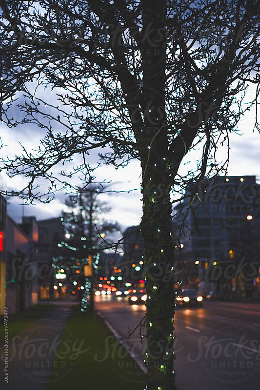 Christmas light along the street in Downtown Vancouver by Luca Pierro for Stocksy United
