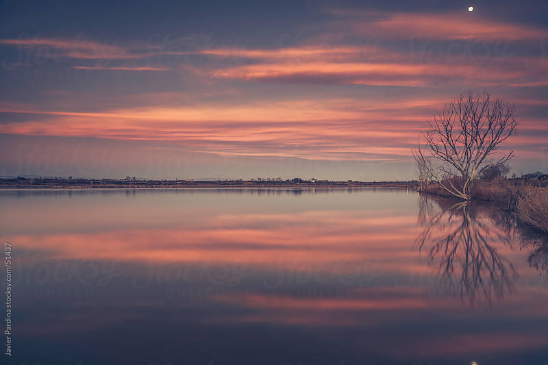 sunset on the lake reflecting clouds by Javier Pardina for Stocksy United