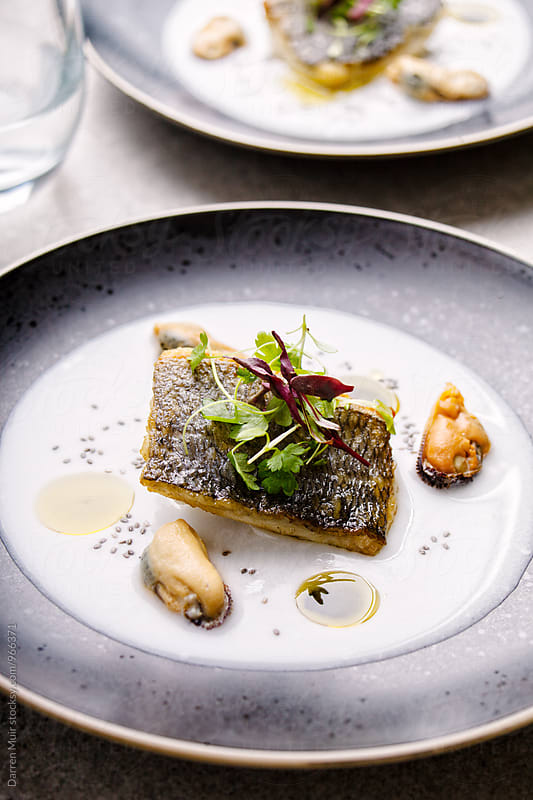 Sea bream with mussel and coconut broth: Side view of a fish course on a black plate. by Darren Muir for Stocksy United