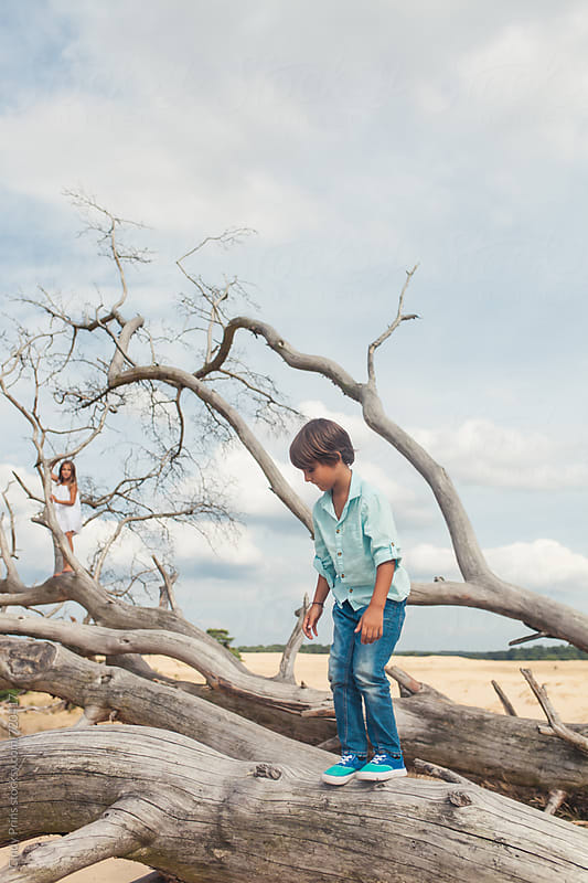 Boy and a girl climbing the branches of a dead fallen tree by Cindy Prins for Stocksy United