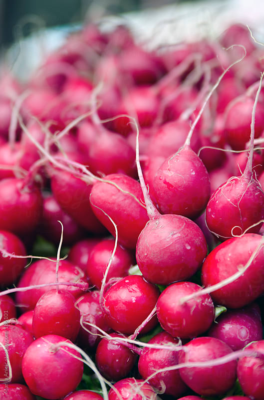 Bunch of radishes by Marija Anicic for Stocksy United