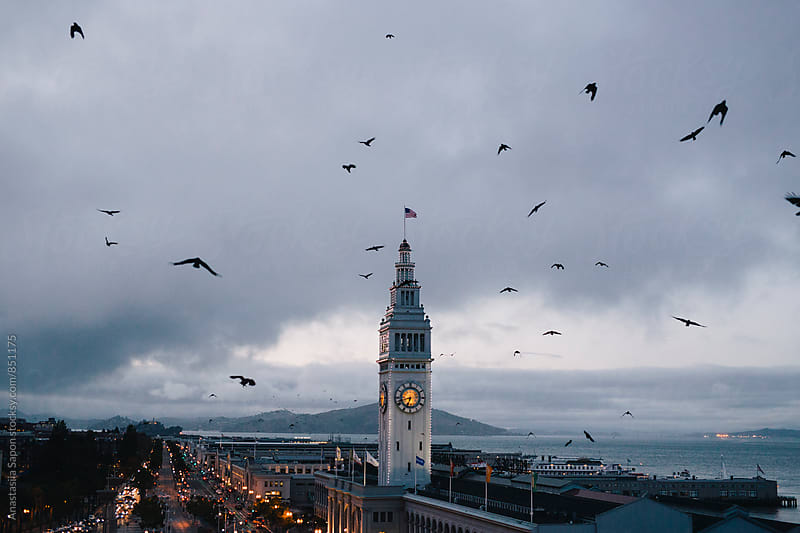 San Francisco. Ferry Building by Anastasiia Sapon for Stocksy United