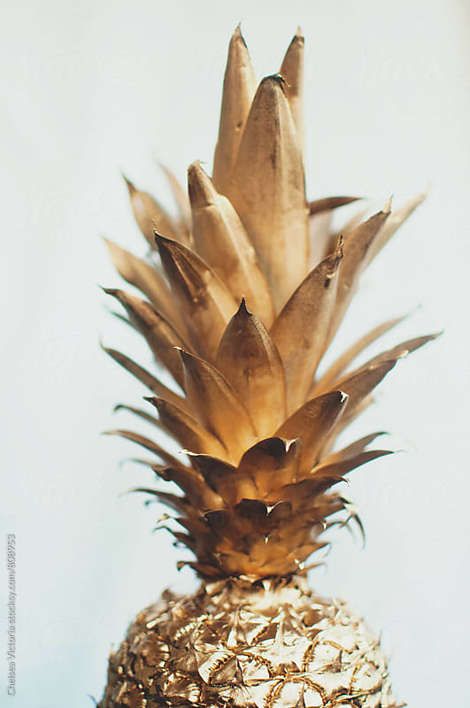 A gold pineapple  by Chelsea Victoria for Stocksy United