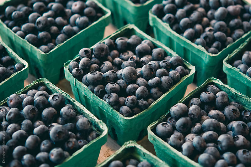 cartons of blueberries at farmer's market by Deirdre Malfatto for Stocksy United