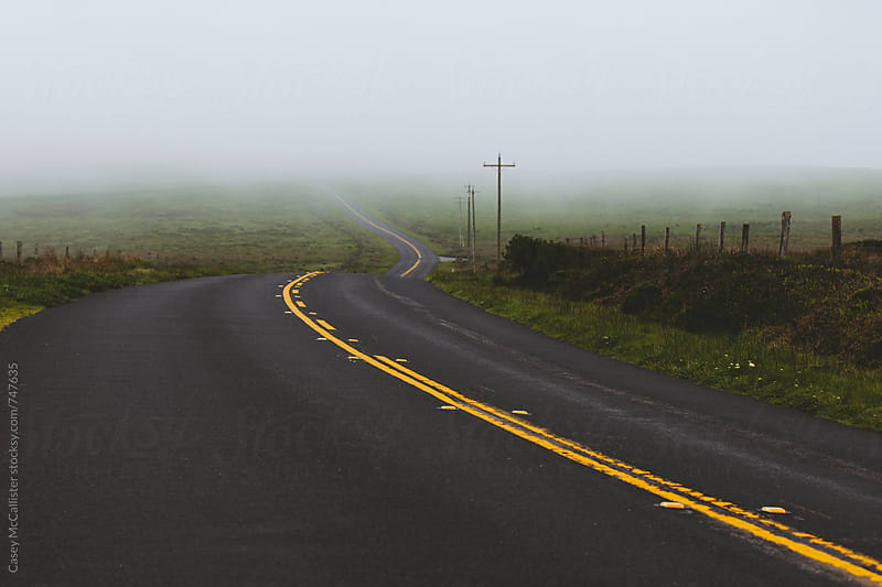 Foggy Bend in the Road by Casey McCallister for Stocksy United