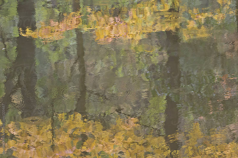 Fall colored trees reflected in a river by Melanie Kintz for Stocksy United