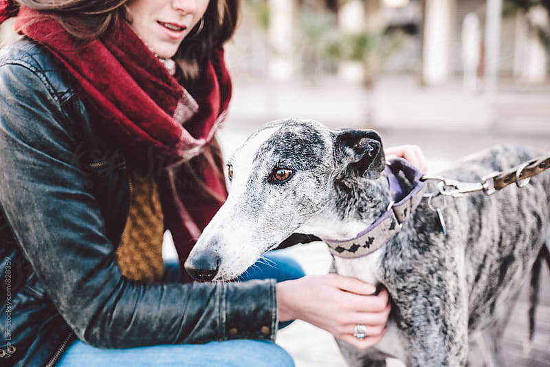 Friendship between a woman and a greyhound by Vera Lair for Stocksy United