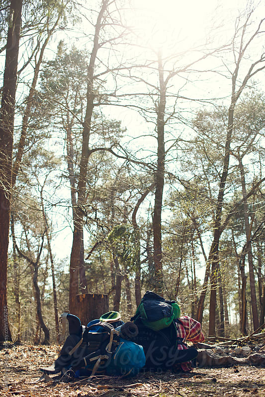 Stack of backpacks in a forest by Denni Van Huis for Stocksy United