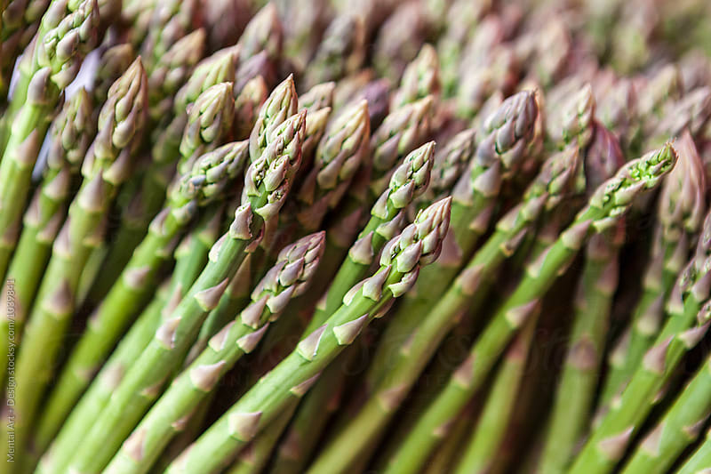 Asparagus background by Mental Art + Design for Stocksy United