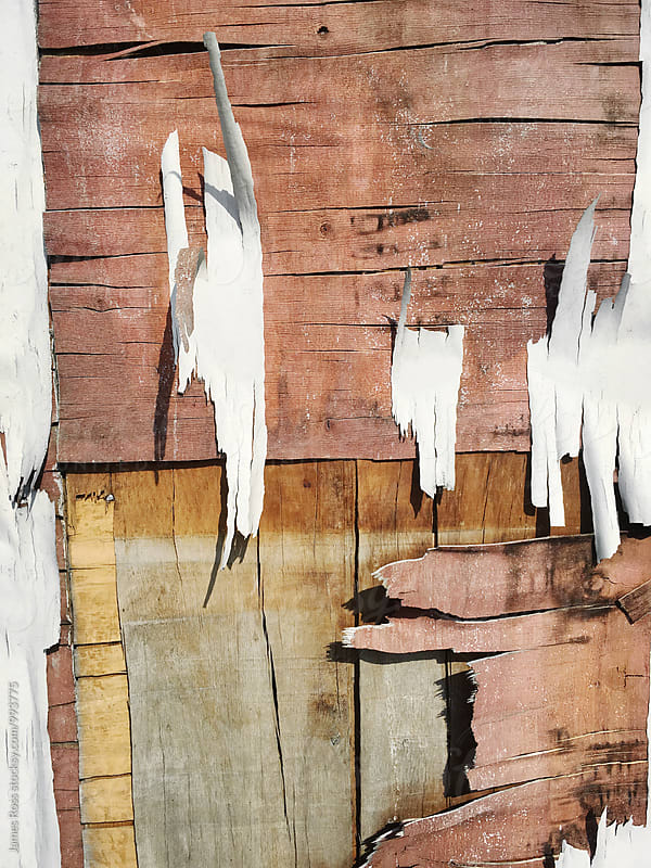 Peeling paint and cracked wood by James Ross for Stocksy United