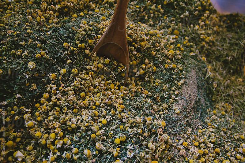 Blending dried herbs by Tari Gunstone for Stocksy United