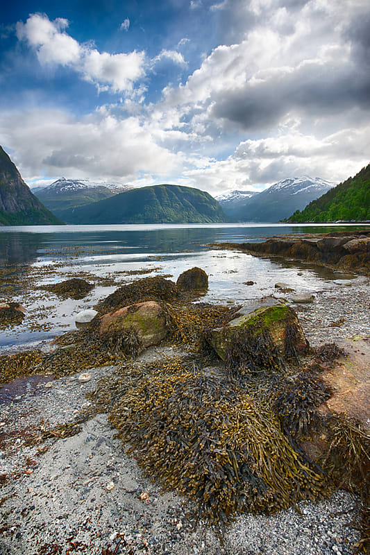 fjord landscape in Norway by Andreas Gradin for Stocksy United