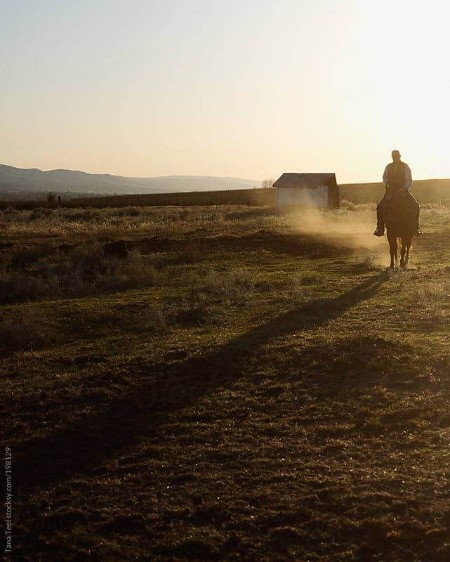 A man riding a horse at sunset  by Tana Teel for Stocksy United