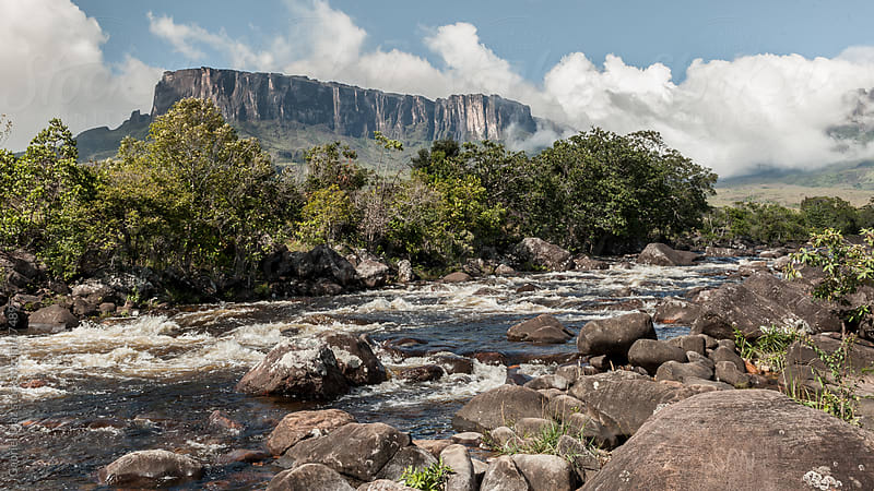 View from way to Roraima - Venezuela, South America by Gabriel Diaz for Stocksy United