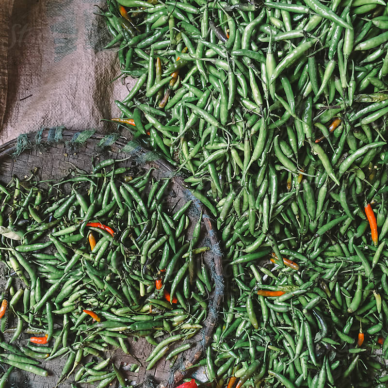 Green chillies. by Shikhar Bhattarai for Stocksy United