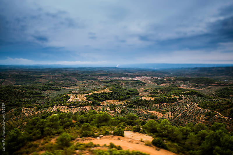 Aerial view of different landscapes by Javier Pardina for Stocksy United